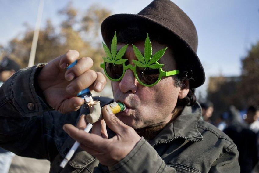 large marihuana a