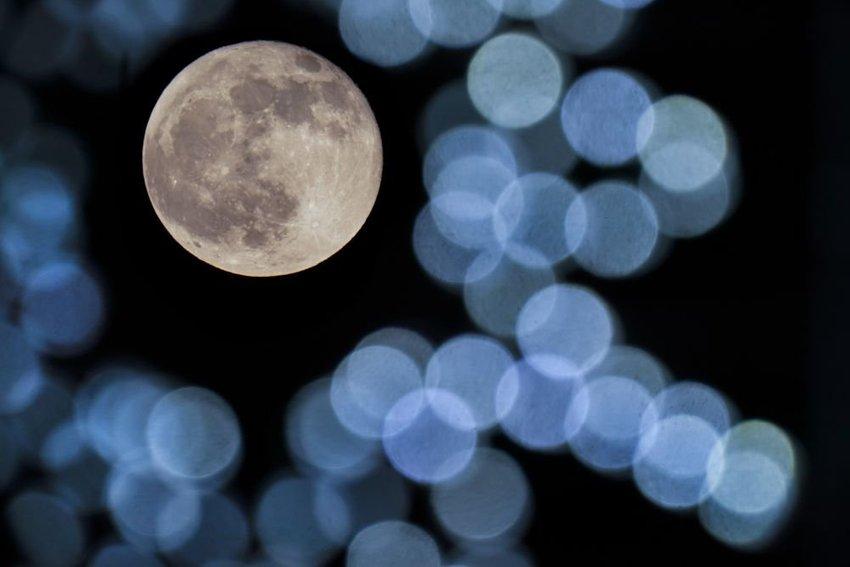 large mesiac faab