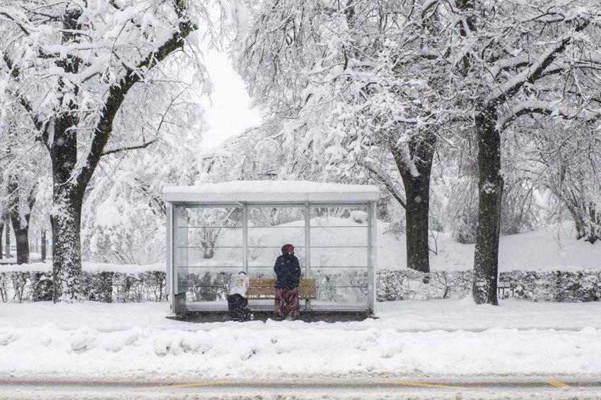 large sneh ddfaca