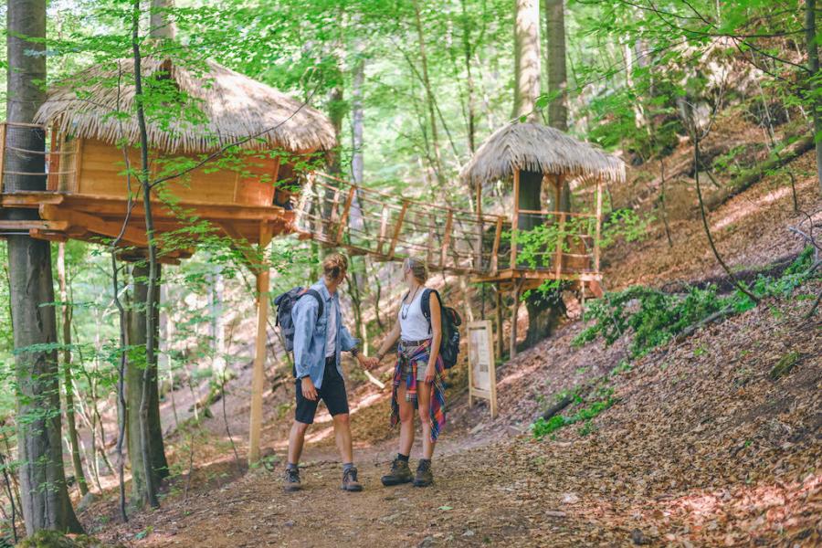 treehouse trencianske teplice