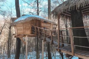 treehouse v zime